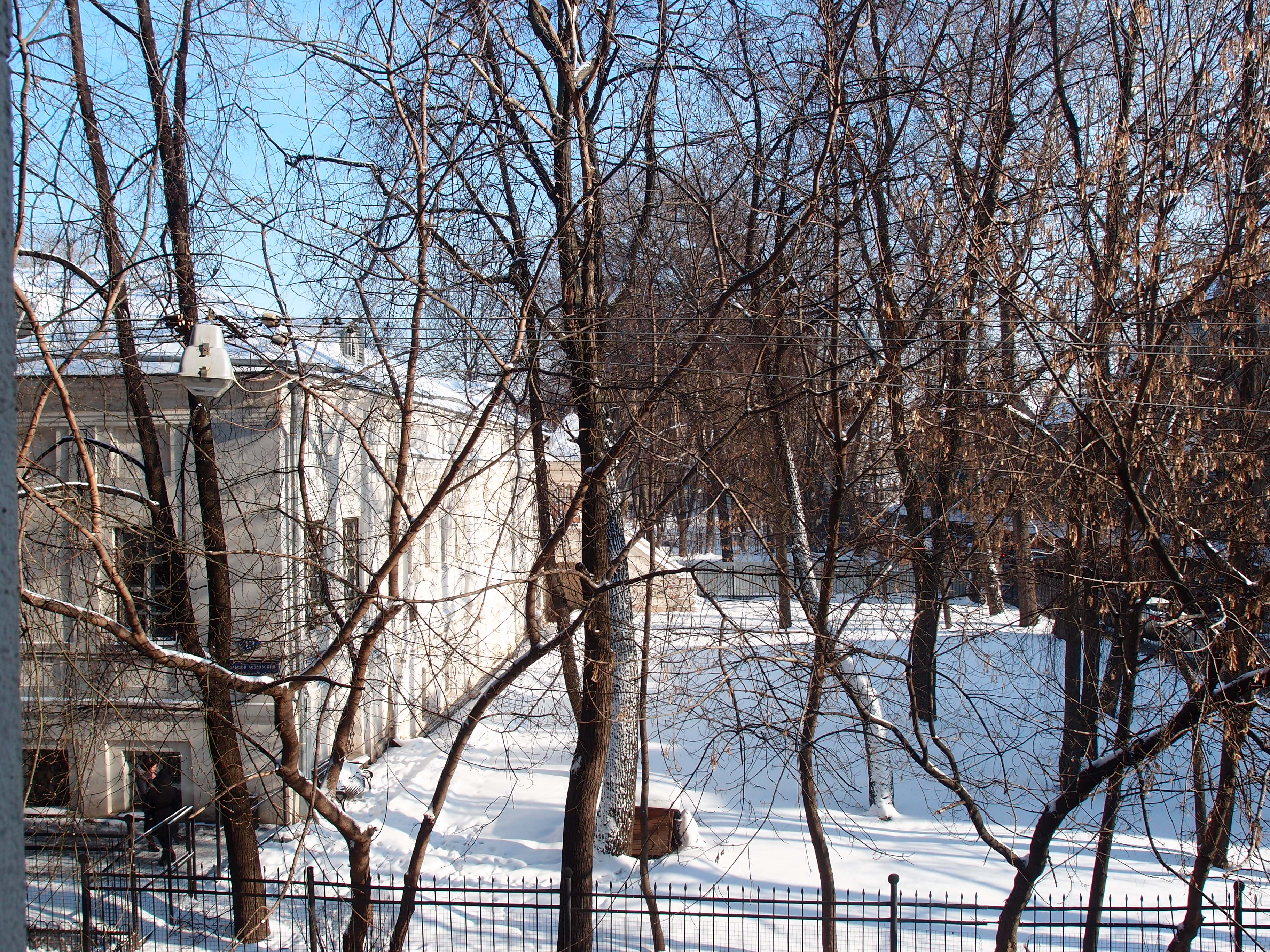 Moscow in the winter
